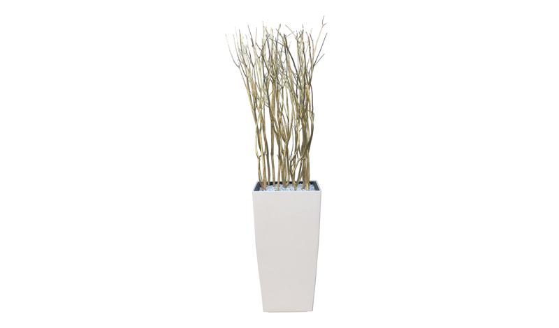 https://www.lounge-en-zo.nl/images/verhuur/bloempot/cubico-oro/bloembak-design-gouden-takken-huren.jpg