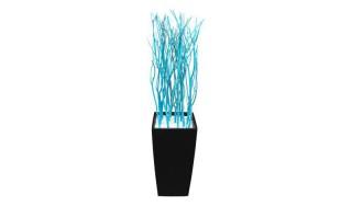 Zwarte Bloembak Huren: Cubico Azul